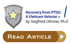 Recovery from PTSD: A Vietnam Veteran by Siegfried Othmer, Ph.D.